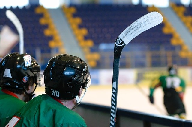 hockey game, stadion, ice skating rink
